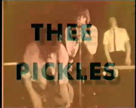 thee-pickles-antiseptic